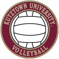 SDS SPORT DECAL VOLLEYBALL