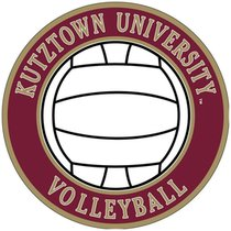 SPORT DECAL VOLLEYBALL